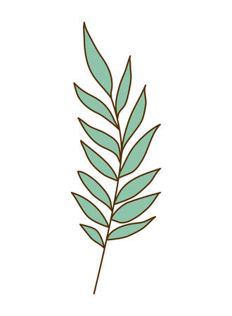 branch with leaves on white background vector illustration design