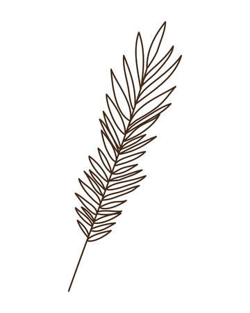 branch with leaf of summer in white background vector illustration design Illusztráció