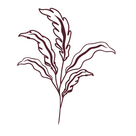 silhouette of branch with leaves on white background vector illustration design