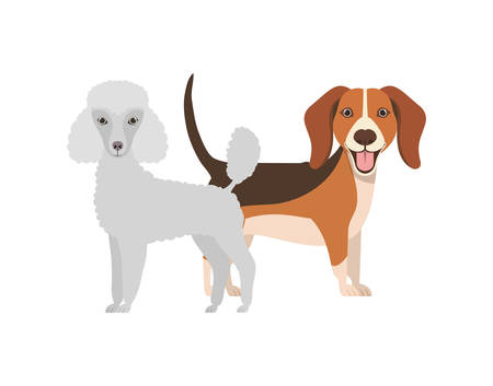 cute and adorable dogs on white background vector illustration design Фото со стока - 129594193