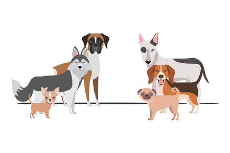 set of adorable dogs on white background vector illustration design Иллюстрация