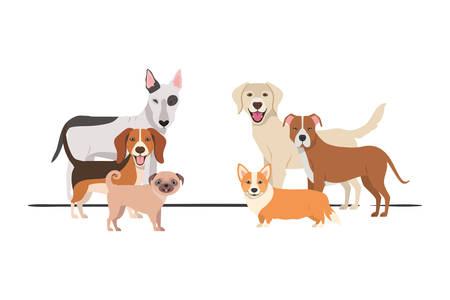 set of adorable dogs on white background vector illustration design Фото со стока - 129693883