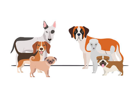 set of adorable dogs on white background vector illustration design Фото со стока - 129748991