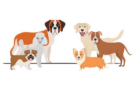 set of adorable dogs on white background vector illustration design