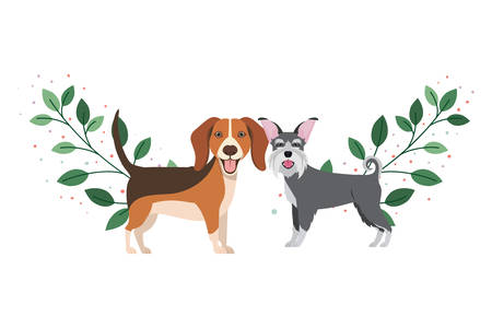 cute and adorable dogs on white background vector illustration design Фото со стока - 129730733