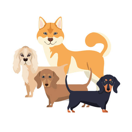 set of adorable dogs on white background vector illustration design Иллюстрация