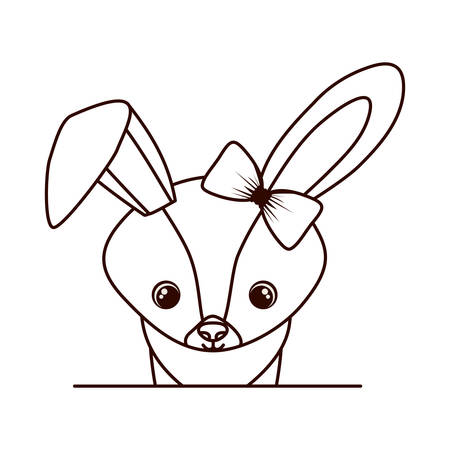 cute and adorable rabbit with frame vector illustration design