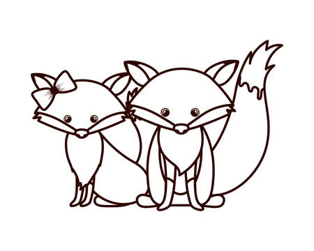 cute couple of foxes on white background vector illustration design