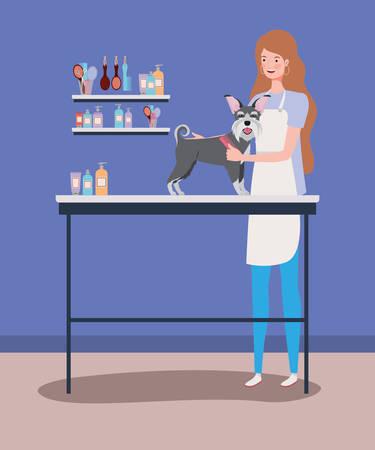 cute schnauzer dog care salon with girl vector illustration design Ilustrace