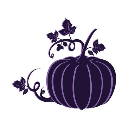 pumpkin in harvest on white background vector illustration design Standard-Bild - 129858396