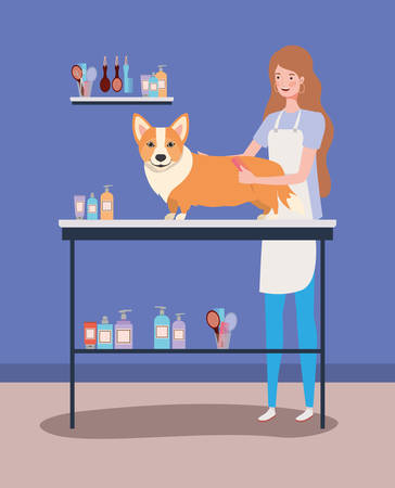 cute corgi dog care salon with girl vector illustration design