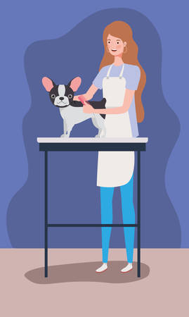 cute french bulldog dog pet care salon with girl vector illustration design Çizim