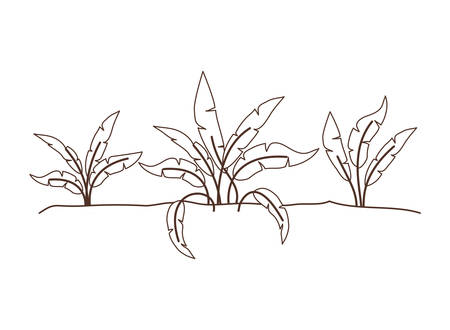 plant in landscape isolated icon vector illustration design Stock Illustratie