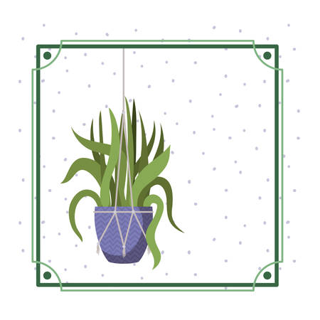 frame with houseplant on macrame hangers vector illustration design