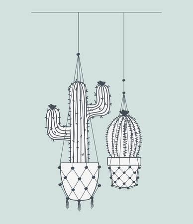 cactus houseplants in macrame hangers vector illustration design