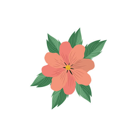 beautiful flowers with leafs isolated icon vector illustration design Stok Fotoğraf - 129811112