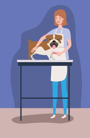 cute bulldog dog care salon with girl vector illustration design