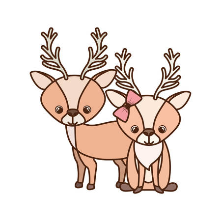 cute couple of deers on white background vector illustration design