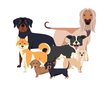 set of adorable dogs on white background vector illustration design Vettoriali