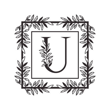 letter U of the alphabet with vintage style frame vector illustration design Illusztráció