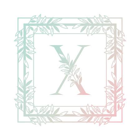 letter of the alphabet with vintage style frame vector illustration design