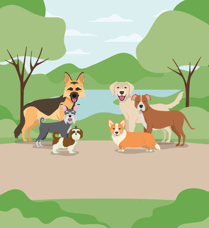 group of dogs pets in the camp characters vector illustration design Ilustrace