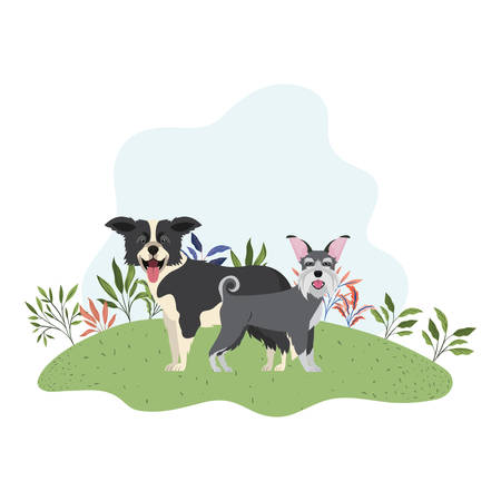 cute and adorable dogs on white background vector illustration design Ilustrace