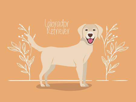 cute labrador retriever dog pet character vector illustration design