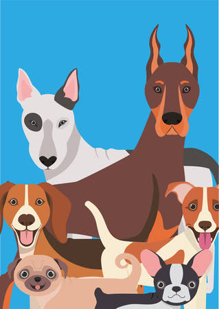 group of dogs pets characters vector illustration design Фото со стока - 129864537