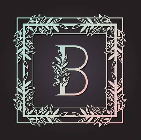 letter B in square frame with leafs vector illustration design