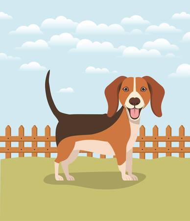 cute dog beagle pet in the camp vector illustration design