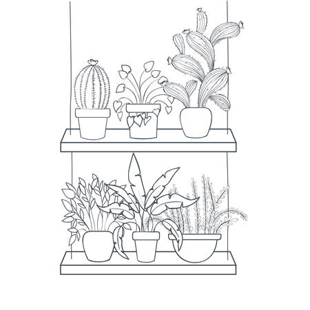 houseplants with potted on shelf isolated icon vector illustration design