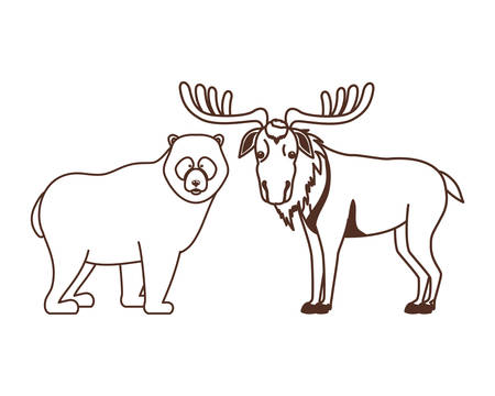 Moose and bear animal design, forest canada life nature and fauna theme Vector illustration Ilustrace