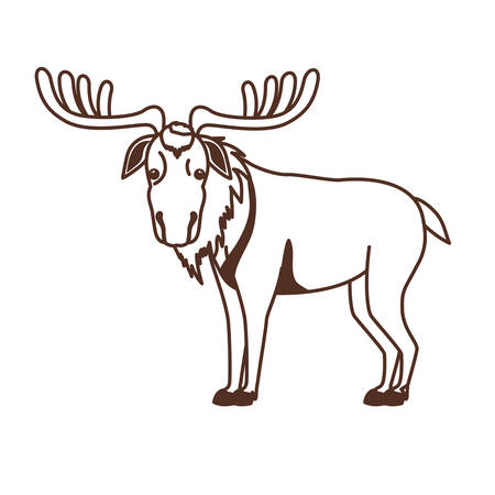 Moose animal design, forest canada life nature and fauna theme Vector illustration