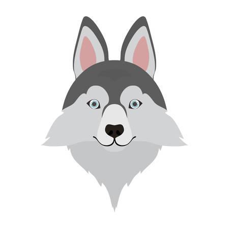 head of cute siberian husky dog on white background vector illustration design