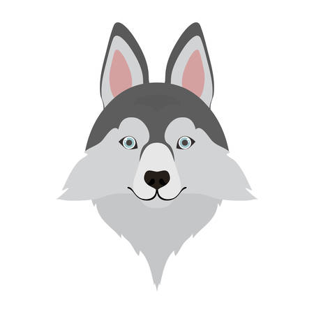 head of cute siberian husky dog on white background vector illustration design