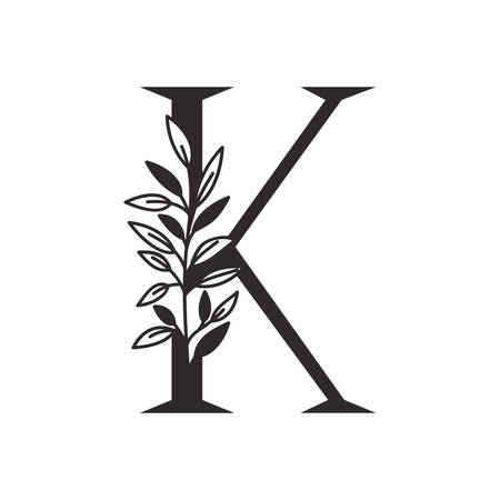 letter K of the alphabet with leaves vector illustration design Фото со стока - 130087953