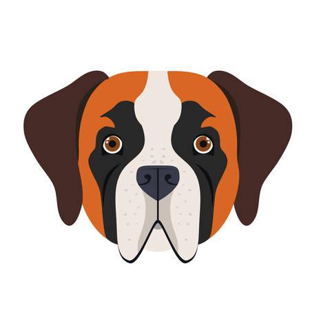 head of cute saint bernard dog on white background vector illustration design
