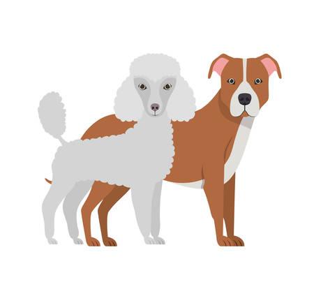 cute and adorable dogs on white background vector illustration design Ilustração