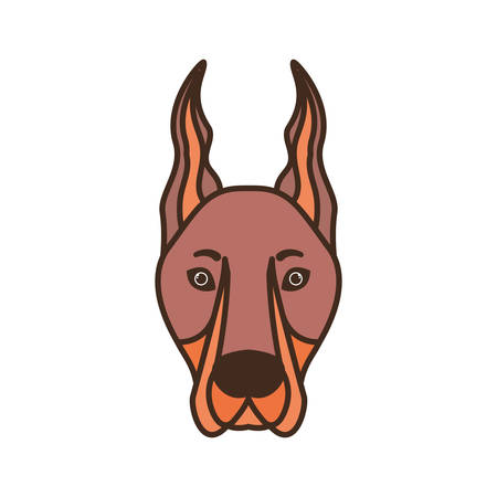 head of cute doberman dog on white background vector illustration design