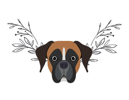head of cute boxer dog on white background vector illustration design