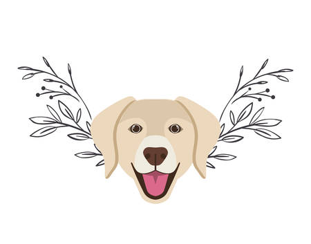 head of cute labrador retriever dog on white background vector illustration design