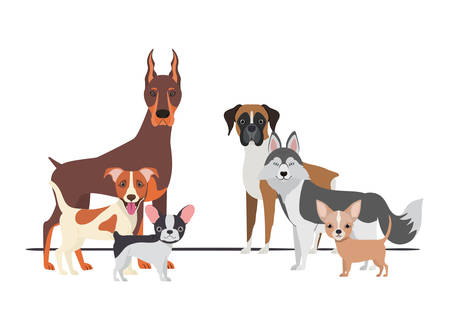 set of adorable dogs on white background vector illustration design