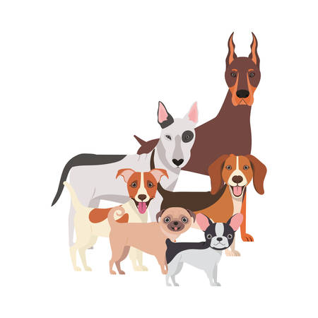 set of adorable dogs on white background vector illustration design  イラスト・ベクター素材