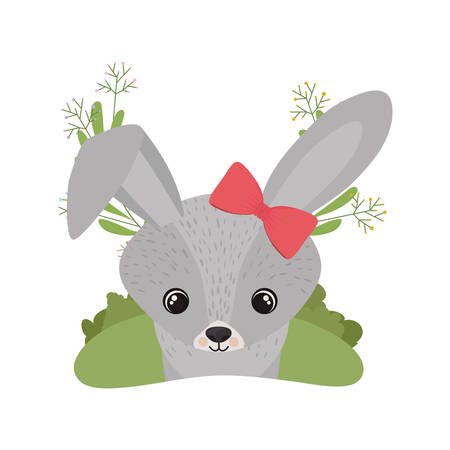 cute and adorable bunny with white background vector illustration design