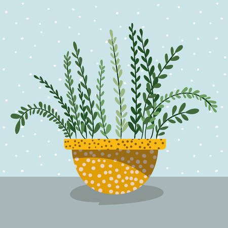 beautiful houseplant in pot vector illustration design
