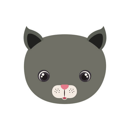 head of cat for baby card with white background vector illustration design Çizim