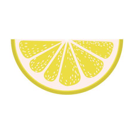 portion of orange in white background vector illustration design Stock Illustratie