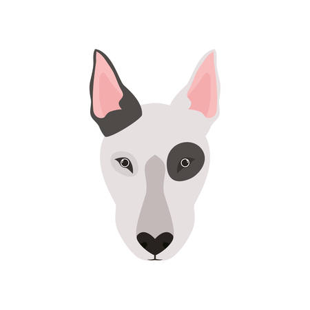 head of cute bull terrier dog on white background vector illustration design Ilustrace