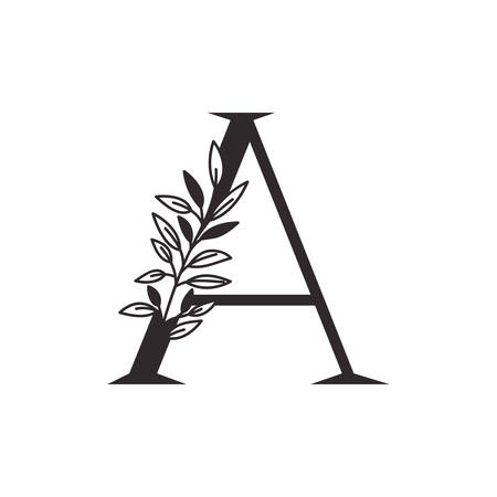 letter A of the alphabet with leaves vector illustration design